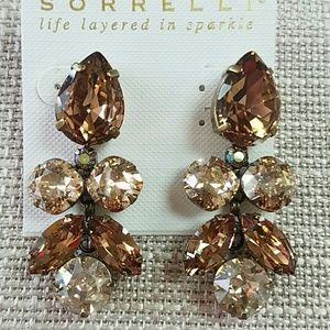 Sorrelli Champagne Colored Earrings Crystal Drop D
